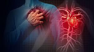 Bệnh tim mạch thường gặp ở người già