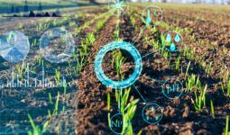Ứng dụng của khoa học dữ liệu trong ngành nông nghiệp