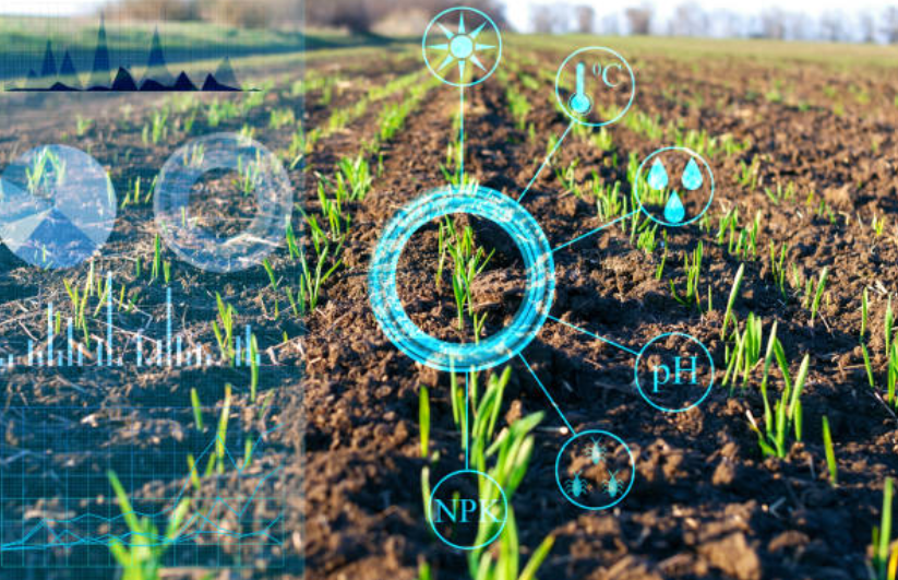 khoa học dữ liệu trong nông nghiệp