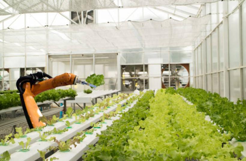tự động hóa trong nông nghiệp
